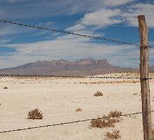 White Sands barbed wire by jcmeyer