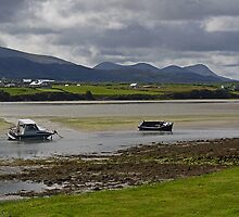 Sheep Haven Estuary by Kat Simmons