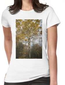 Autumn Colours in the sunshine  Womens Fitted T-Shirt