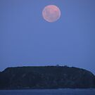 Full Moon over Tollgate Islands by Trish Meyer