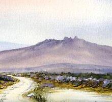 Dartmoor Tor  by Neil Jones
