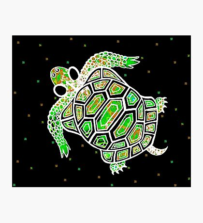GREEK TURTLE Photographic Print