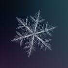 Neon, snowflake macro photo by Alexey Kljatov
