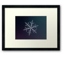 Neon, snowflake macro photo Framed Print