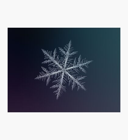 Neon, snowflake macro photo Photographic Print