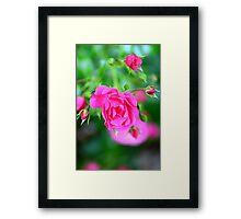 Love that Pink Framed Print