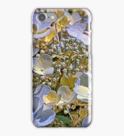 Vanilla Hydrangea iPhone Case/Skin