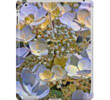 Vanilla Hydrangea iPad Case/Skin