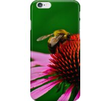 Busy Bumble Bee 2 iPhone Case/Skin