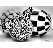 BLACK & WHITE SENSATION Photographic Print