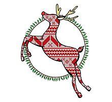 Christmas Reindeer Drawing Photographic Print