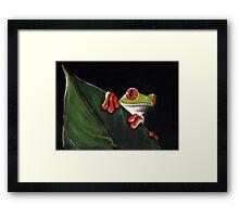 Midnight Mischief  -  Original Painting Red-Eyed Tree Frog Framed Print