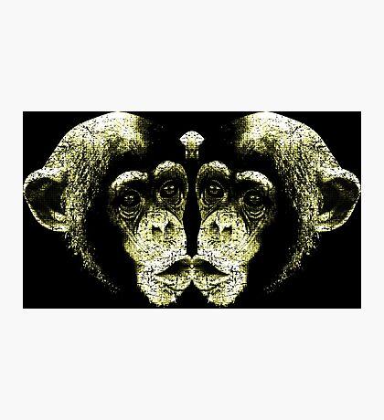 Monkey Kiss Photographic Print