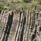 Organ Pipes (2) by kalaryder