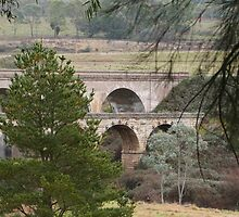 Interesting Viaduct! Lithgow, New South Wales. by Rita Blom
