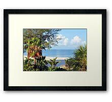 Tropical Morning Framed Print