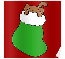 Green Stocking and Fat Brown Cat Poster