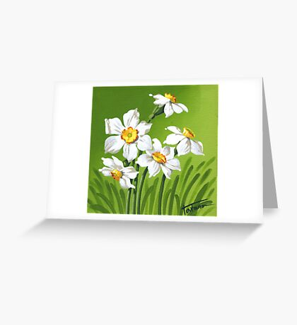 Narcis - daffodils Greeting Card