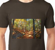 Autumn Forest Killarney Unisex T-Shirt