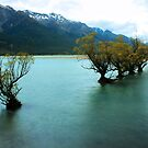 Glenorchy by George Grimekis