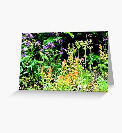 Wildflowers II Greeting Card