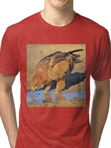 Tawny Eagle - Curious Life and Funny Nature Tri-blend T-Shirt