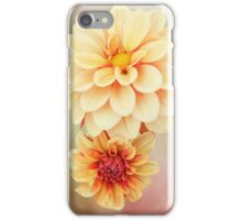 Beautiful Dahlia Blossoms in Warm Hues iPhone Case/Skin