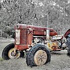 Tractor's end. by George Petrovsky