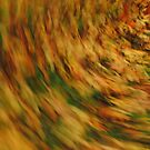 Autumn Whirlwind by Themis