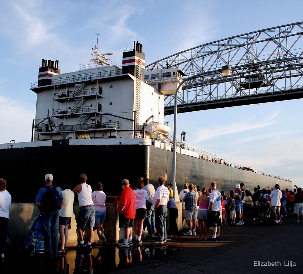 Ship Sailing Under The Lift Bridge by Elizabeth  Lilja
