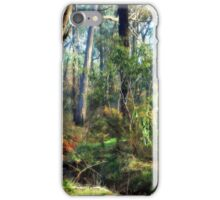 Lush Color of Winter iPhone Case/Skin