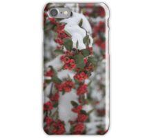 Berry Winter iPhone Case/Skin
