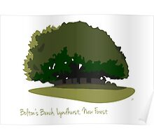 Bolton's Bench, New Forest Poster