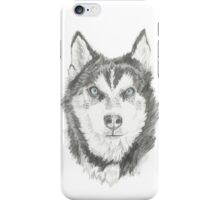 Tundra iPhone Case/Skin