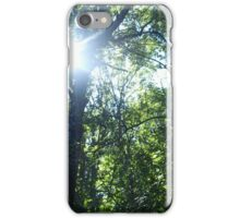 Sunlight streaming through the trees iPhone Case/Skin