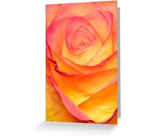 Colourful Rosie Greeting Card