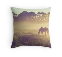 Misty Morning on the Dutch Field Throw Pillow