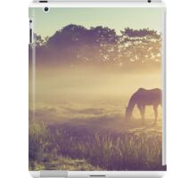 Misty Morning on the Dutch Field iPad Case/Skin
