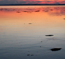 sunset over the sea Sticker