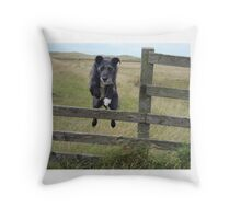 jumping dog Throw Pillow