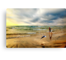 The Girl and The Seagull Canvas Print