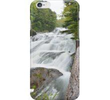 Dragon Fall iPhone Case/Skin