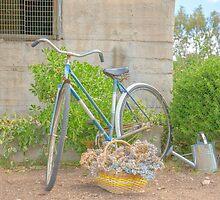 Gardening...... by mitpjenkeating