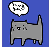 Thank You Blue Cat Photographic Print