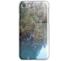 Homosassa Springs Manatee Pond iPhone Case/Skin