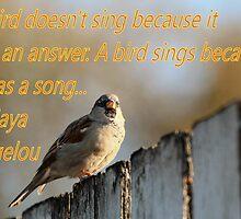 Inspiration from Maya Angelou by Keala