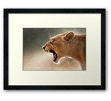 Lioness displaying dangerous teeth Framed Print