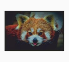 Red Panda with border Kids Tee
