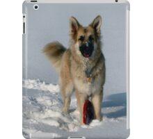Snow Fun! iPad Case/Skin