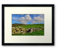 A Favourite Day. Framed Print